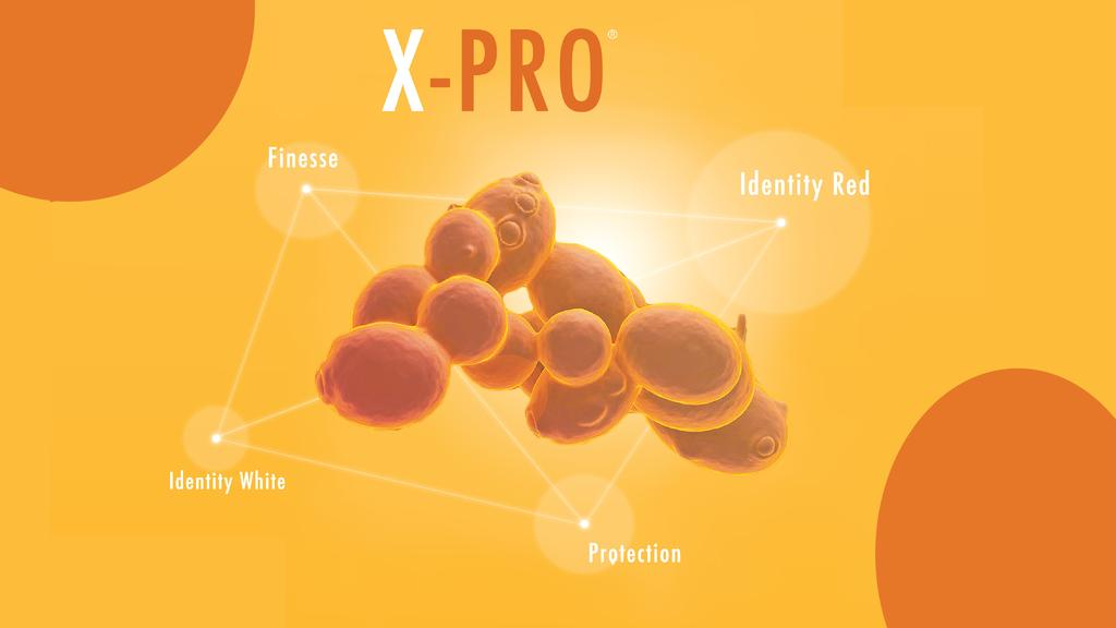X-PRO®: A NEW APPROACH TO OENOLOGY
