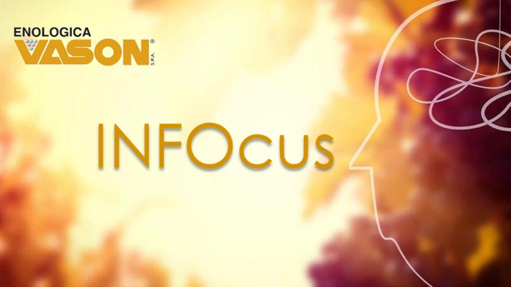 INFOcus #3