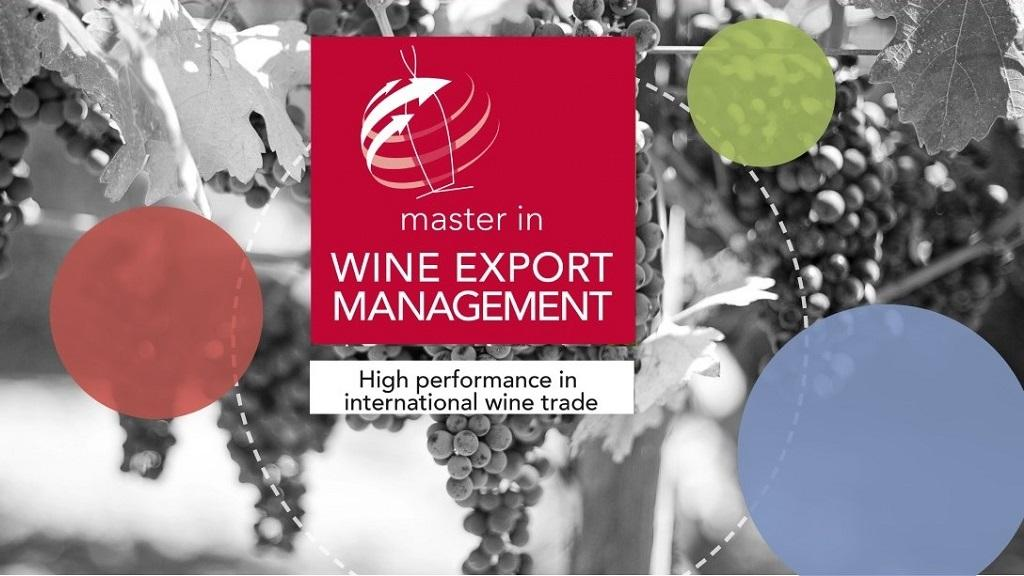 Borse di studio | Master in Wine Export Management